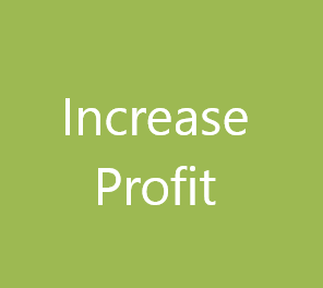 Increase Profit